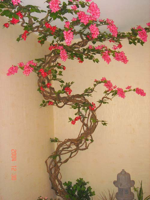 日本室內入戶花園